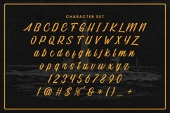 Web Font Intro Script Product Image 5