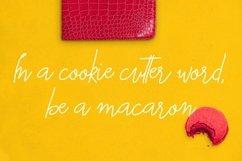 Macarons - Font and Extras / Cursive Font / Script Font / Product Image 5