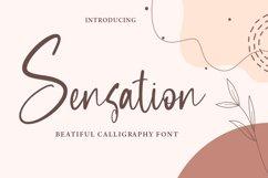 Sensation - Beautiful Calligraphy Font Product Image 1