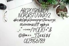 Web Font Moonlight - Handlettering Font Product Image 4