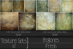 Texture Sets x 2. Bygones and Fresh. Product Image 2
