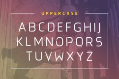 Brushtype Od Display Font Product Image 5