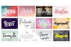 Mega Exclusive Font Bundle - 350 Font Product Image 18