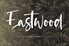 Eastwood Stylish Bold Script Font Product Image 1
