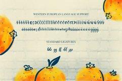 Orange You Glad? Font Product Image 5