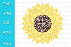 Sunflower SVG. Mandala, zentangle. PNG, EPS, JPEG, DXF file. Product Image 1