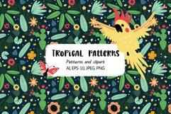 Tropical parrots set Product Image 1