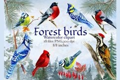 Forest birds watercolor clipart, Red cardinal. Product Image 1