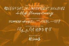 Web Font Rucker - Stylish Brush Font Product Image 3