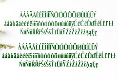 Axell Serif Font Family Product Image 4