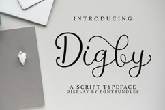 Web Font Digby Product Image 1
