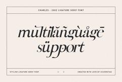 Charles - Ligature Serif Font Family Product Image 6