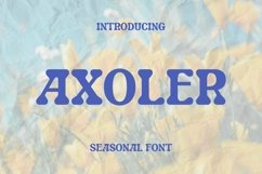Web Font Axoler Font Product Image 1