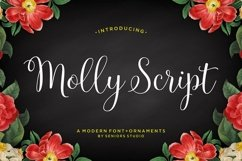 Molly Script Product Image 1