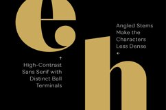 Quiche Fine Black Font Product Image 5