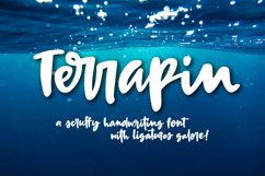 Terrapin - a scrappy handwriting font! Product Image 1