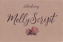Melly Script Font Duo Product Image 4