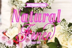 Natural Fence Product Image 1