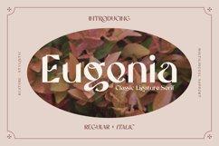 Eugenia - Ligature Serif Font Product Image 1