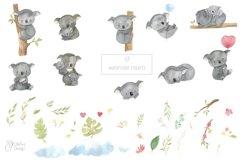 Koala clipart. Watercolor Australian animal clip art. Product Image 2