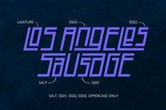 SALAGIATEC Product Image 6