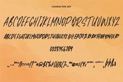 Web Font Southeast - Fancy Handwritten Font Product Image 5