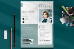 Resume CV v.04 Product Image 2
