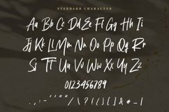 Handwritten Signature - Agustine Roland Font Product Image 6