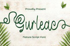 Gurleac Font Product Image 1