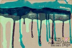 Dripping Paint Photoshop Brushes Product Image 3