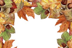 Autumn leaves, watercolor Product Image 5
