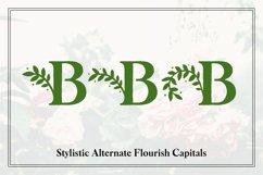 Botany Font Family Product Image 4