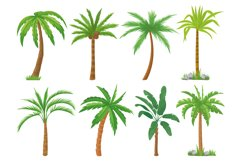 Palm trees. Tropical tree green leaves, beach palms and retr Product Image 1