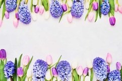 Colorful tulips and hyacinths border on light background. Product Image 1