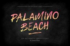 Palamino Beach Brush Font Product Image 1