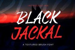 Black Jackal - Brush Font Product Image 3