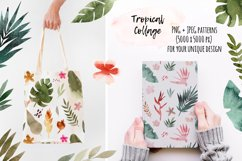 Tropical Collage. Patterns, Cliparts Product Image 4