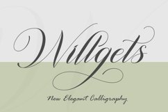 Willgets Product Image 1