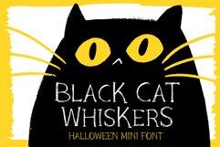 Black Cat Whiskers - Mini Serif Font Product Image 1