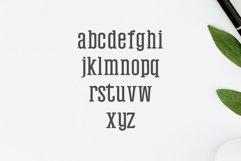 Mahlon Serif 3 Font Family Pack Product Image 4