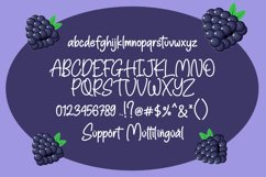 Blackberry - Playful Typeface Product Image 5