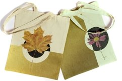 Fall flowers, herbs and leaves photo clipart Transparent PNG Product Image 3