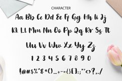Lena Brush Typeface Product Image 4