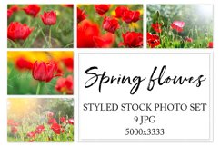 Spring flowers. Styled stock photo set. Product Image 1
