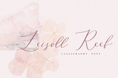 Leisoll Reef, modern calligraphy script Product Image 1