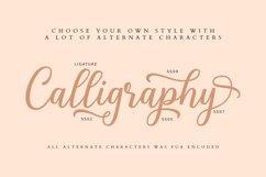 Shalinta - Luxury Calligraphy Font Product Image 3