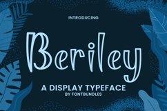 Web Font Beriley Product Image 1