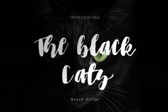 The black cats brush Script Product Image 1