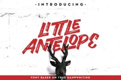 Web Font Little Antelope Font Product Image 1
