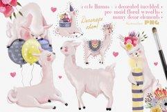 Floral Birthday Llamas Product Image 2
